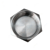 Sanitary Stainless Steel Hexagonal Blank Nuts with Chain